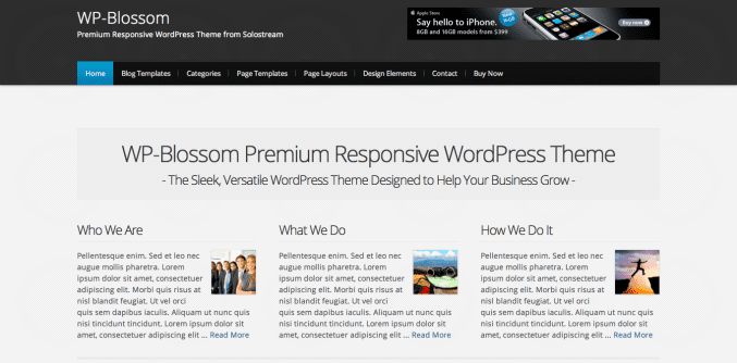 Blossom by studiopress wordpress theme per la tua azienda